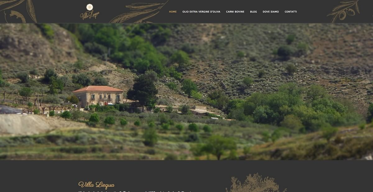 Villa Liequa